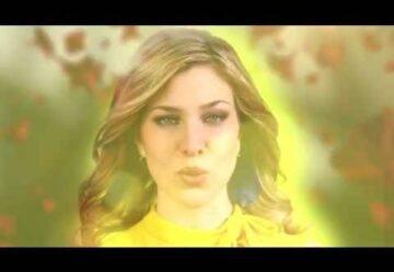 Laura Wilde Blumen Im Asphalt