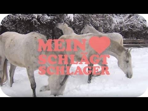 Nik P. – Auf weißen Pferden (Schlager TV Video)