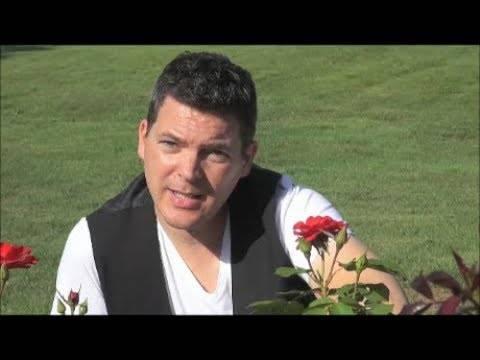Mario Steffen – Immer wieder mit Dir (offizielles Video)